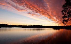Обои розовый, река, закат, небо, вечер