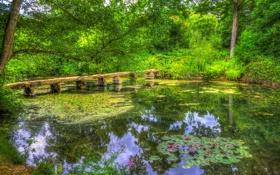 Картинка зелень, мост, пруд, парк, обработка, Великобритания, Nostell