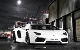 Обои белый, небо, ночь, луна, тюнинг, Lamborghini, порт