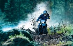 Картинка ветки, природа, обои, спорт, мото, грязь, мотоцикл