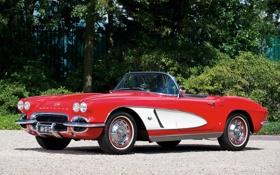 Обои красный, фон, Corvette, Chevrolet, Шевроле, спорткар, классика