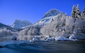 Обои зима, природа, река