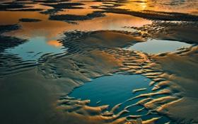 Обои песок, пляж, вода, отражение, лужи, Oregon, south of Gold Beach