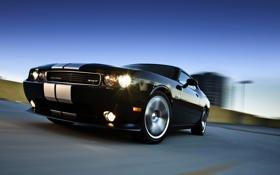 Обои Черный, Полосы, Машина, Dodge, Challenger, Фары, Передок