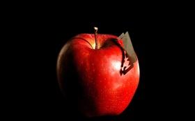Обои фрукт, бритва, яблоко