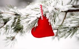 Картинка любовь, сердце, love, heart, snow, romantic