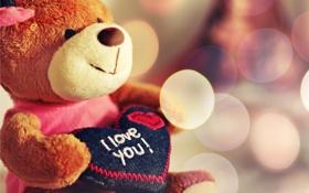 Обои настроения, сердце, мишка, love, я тебя люблю, i love you