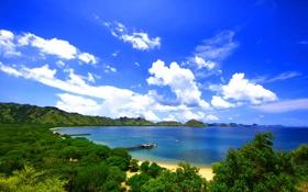 Обои песок, залив, берег, деревья, облака, небо, лодка
