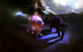 Обои кошка, кот, красный, воздушный шар, котенок, шарик, red