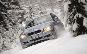 Обои снег, палки, BMW, ёлки, Touring, 320d
