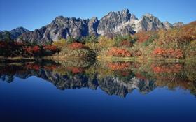 Обои осень, горы, озеро, отражение, кусты