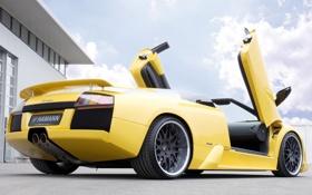 Обои машина, тюнинг, Roadster, Lamborghini, Hamann, Murcielago, задок