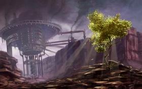 Картинка свет, дерево, дым, Завод
