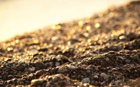 Картинка песок, пляж, солнце, макро, свет, камни, light