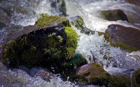 Картинка вода, капли, пейзаж, брызги, природа, камни, мох