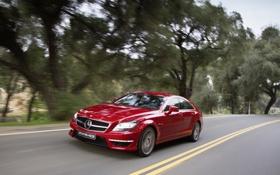 Картинка дорога, деревья, красный, Mercedes-Benz, скорость, седан, мерседес