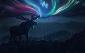 Картинка пейзаж, ночь, северное сияние, арт, рога, лось