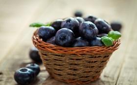 Обои ягоды, черника, корзинка, fresh, blueberry, голубика, berries