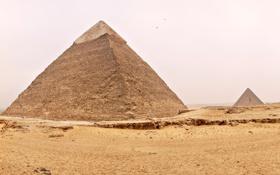 Обои песок, небо, птицы, пустыня, Египет, пирамиды