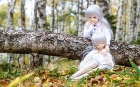 Обои природа, волосы, девочки, игрушки, куклы, сиреневые