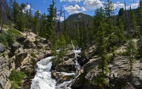 Обои деревья, горы, природа, парк, фото, США, водопады