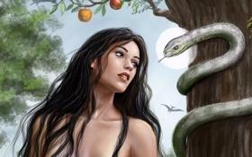 Картинка взгляд, девушка, дерево, волосы, змея, арт, яблоня