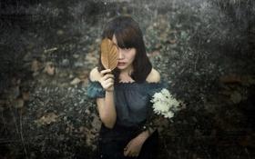 Обои взгляд, девушка, лист, фон