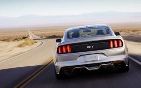Обои дорога, Mustang, Ford, Форд, Мустанг, вид сзади, Muscle car