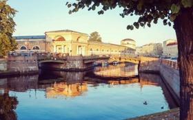 Картинка вода, мост, река, здания, дома, Питер, Санкт-Петербург
