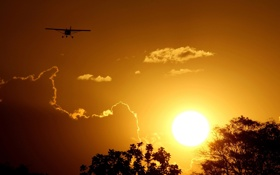 Картинка небо, солнце, закат, природа, самолет, верхушки деревьев