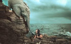 Обои слон, человек, море
