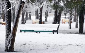 Картинка зима, снег, деревья, парк, разноцветные, скамейки, Snow park