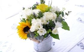 Обои фото, Цветы, Подсолнухи, Розы, Много, Фрезия