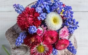 Обои лепестки, ваза, цветочки