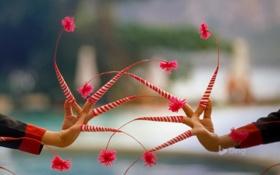 Обои Таиланд, пальцы, украшение, танцы
