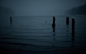 Картинка вода, ночь, фото, пейзажи