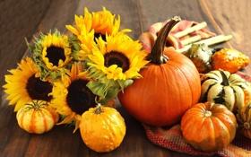 Картинка цветы, оранжевый, стол, тыква, подсолхнухи