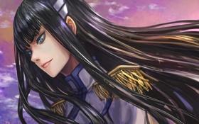 Картинка девушка, ветер, волосы, арт, профиль, kill la kill, zhouran