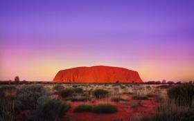 Обои скала, пустыня, австралия, Улуру, Айерс Рок, оранжево-коричневая