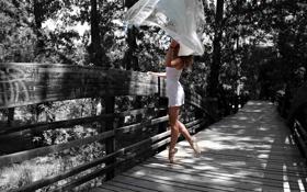 Картинка девушка, мост, парк