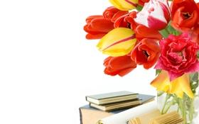 Обои tulips, розы, цветы