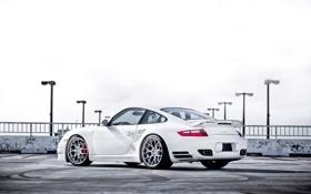Обои задняя часть, Turbo, Porsche, 997, порше, турбо, white