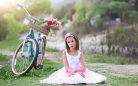 Картинка цветы, велосипед, девочка