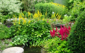 Обои зелень, цветы, сад, кусты, Голландия, Appeltern Gardens