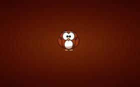 Картинка сова, owl, минимализм