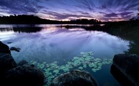 Картинка небо, вода, облака, пейзаж, природа, озеро, камни