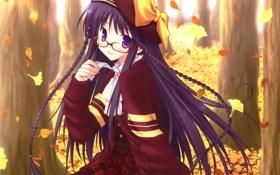 Обои осень, листья, девушка, деревья, аниме, арт, очки
