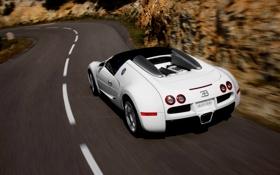Обои Дорога, Белый, Машина, Bugatti, Veyron, Спорткар, В Движении
