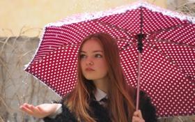 Обои улица, Девушка, зонт