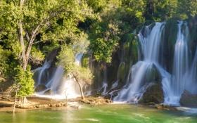 Обои природа, лес, деревья, водопад
